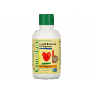 ChildLife Liquid Calcium with Magnesium, Orange 473 ml