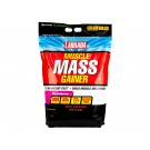 Labrada Muscle Mass Gainer High Calories
