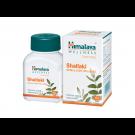 Himalaya Wellness Shallaki (Boswellia serrata)